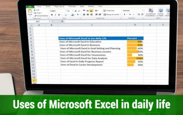 Uses of Microsoft excel in daily life