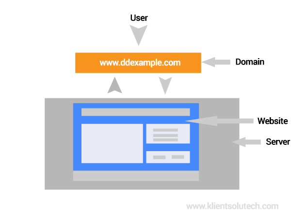 Difference between website and domain