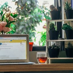 how to start online business at home