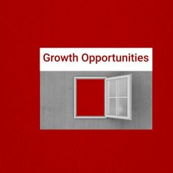 Business growth opportunities examples